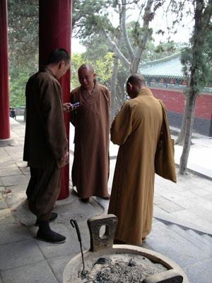 Vinge Chun Kung Fu fotografering för bildbyråer. Bild av