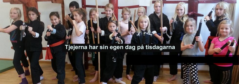 kungfusweden_5 kopiera