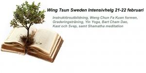 wingtsunfebruari2015 kopiera
